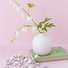 Pastel pink and white floral still life with shells by Zoe Power