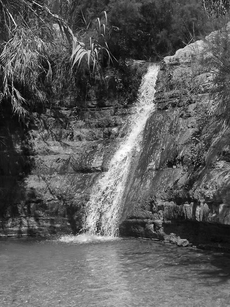 Waterfall by Adam Isaacson