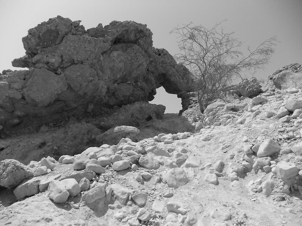Rocks by Adam Isaacson