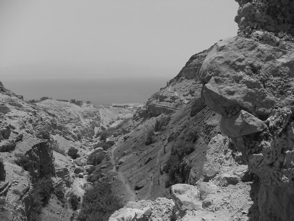 Rock formation with Dead Sea by Adam Isaacson