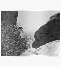 Rocks and Bush with Dead Sea Poster