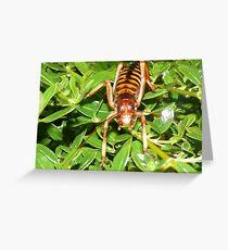 Tree Weta Greeting Card