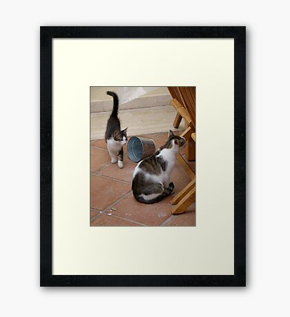 Curiousity Comes in Twos Framed Print