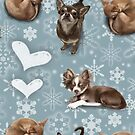 The Christmas Chihuahua by Elspeth Rose