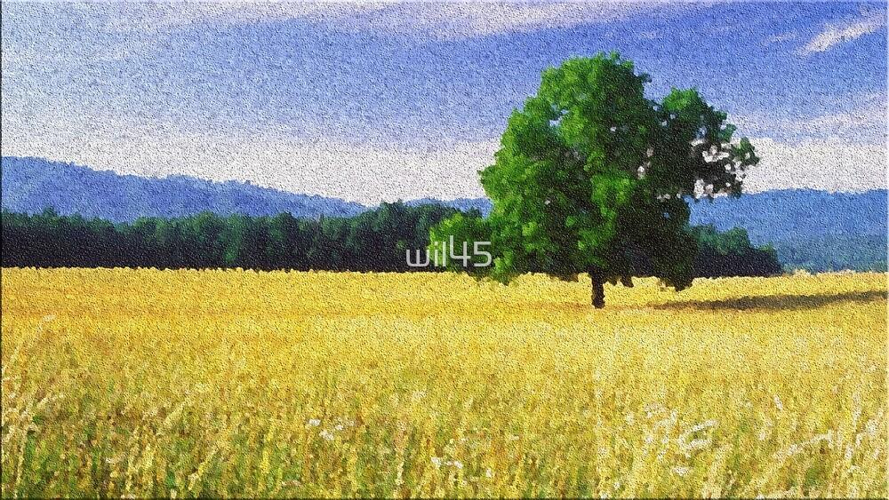 Open Field by wil45