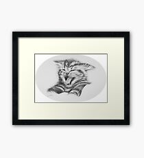 Sour puss. Kitten Framed Print