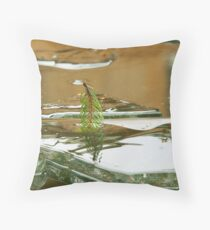 Refelction in the Ice Throw Pillow