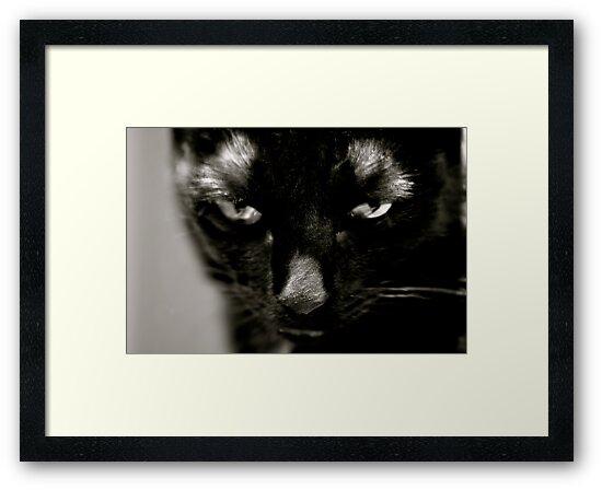 Mouser Mugshot  by Ainsley Kellar Creations