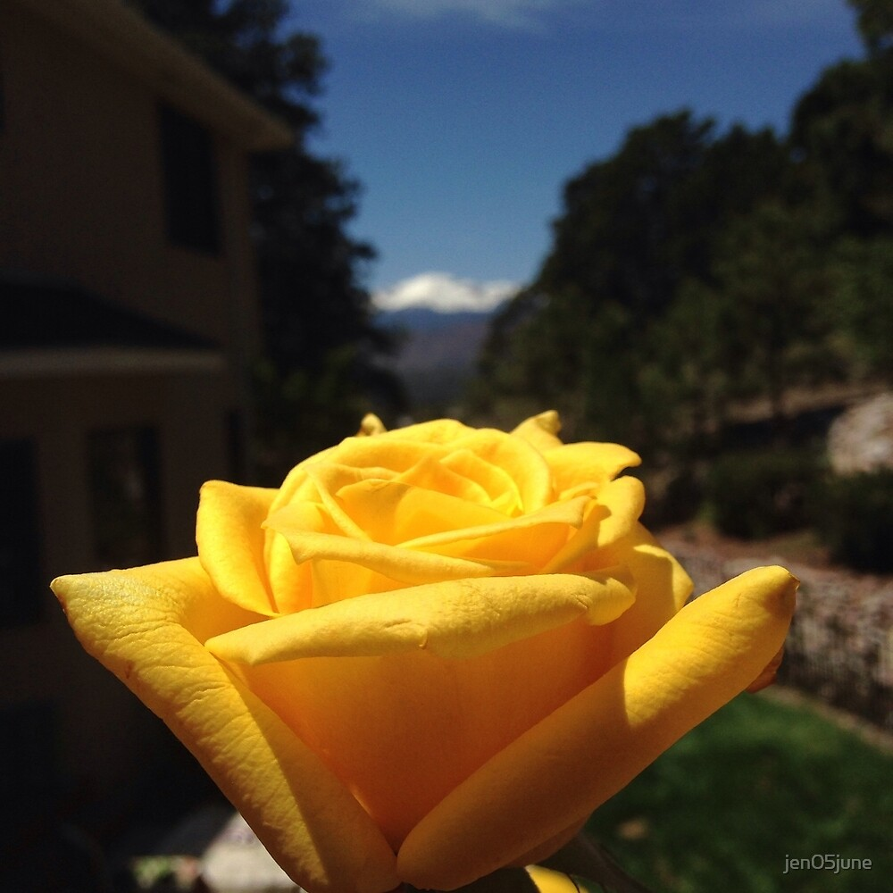 Pikes peak and yellow rose  by jen05june