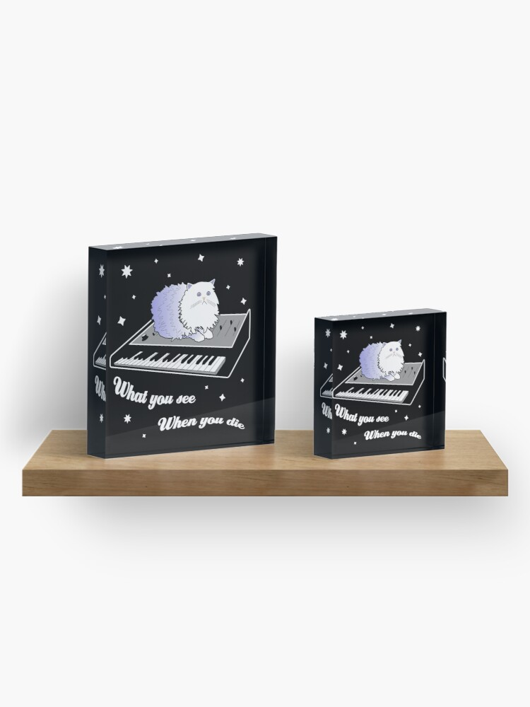 Alternate view of Cat on a Keyboard in Space Acrylic Block