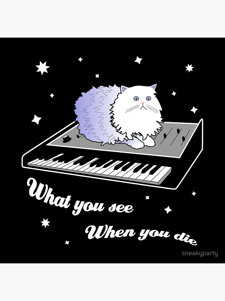 Cat on a Keyboard in Space by sneakyparty