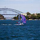 12 Foot Skiff on Sydney Harbour by Richard  Windeyer