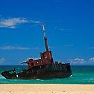 Sygna Wreck on Stockton Beach by Richard  Windeyer