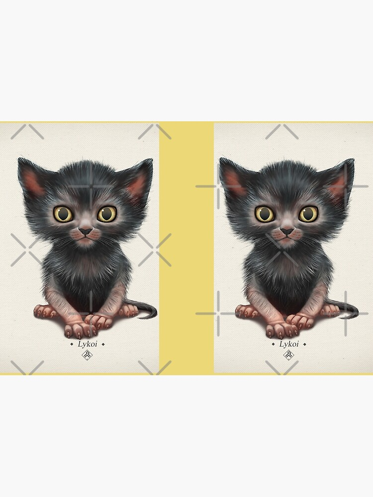 Lykoi kitten (Werewolf cat) by ikerpazstudio