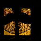 Fan silhouette by Erika Gouws