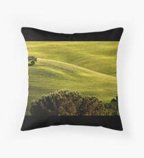 Toscana #4 Throw Pillow