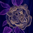 A Rose in the Negative by Anne Gitto