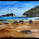 ROCKY BEACH by Wayne Dowsent