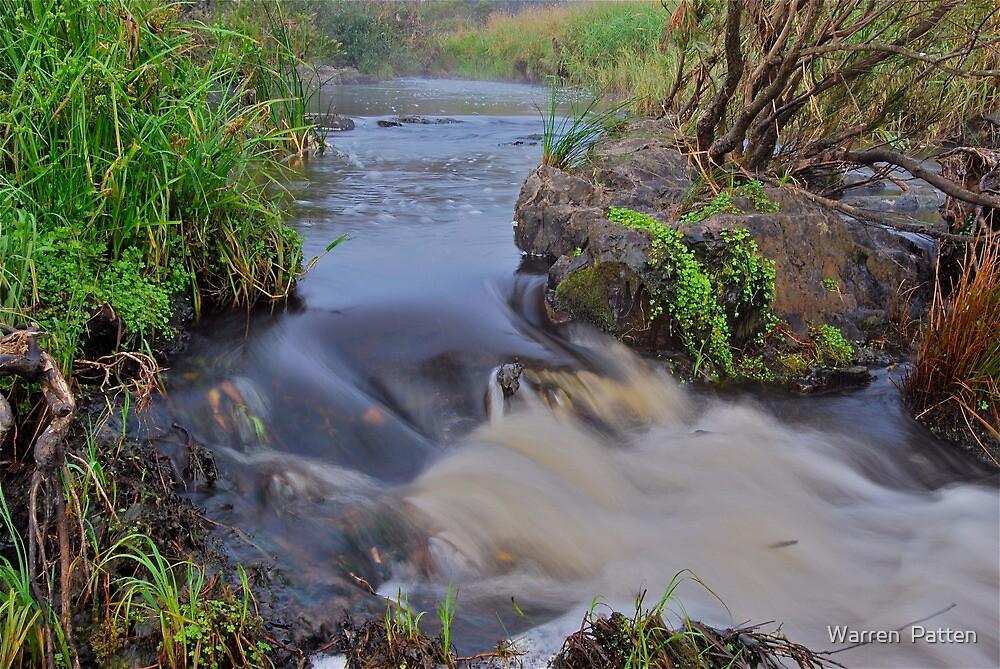 Apsley River.  24-1-11. by Warren  Patten