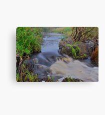 Apsley River.  24-1-11. Canvas Print