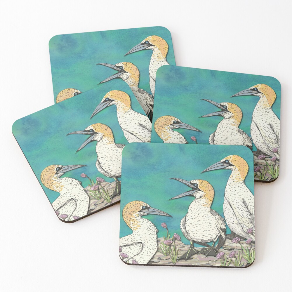 A Gaggle of Gannets Coasters (Set of 4)