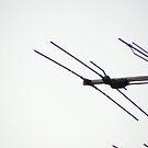 Aerial by minikin