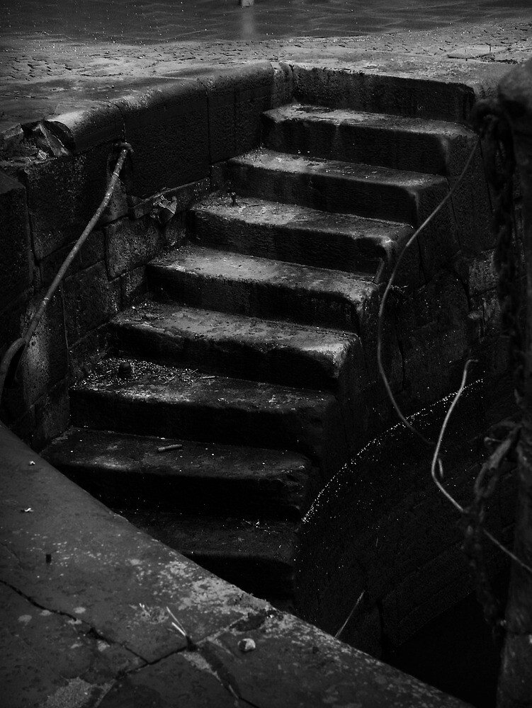 The Descent by Chris Cardwell