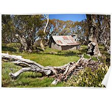 Wallace Hut IV Poster