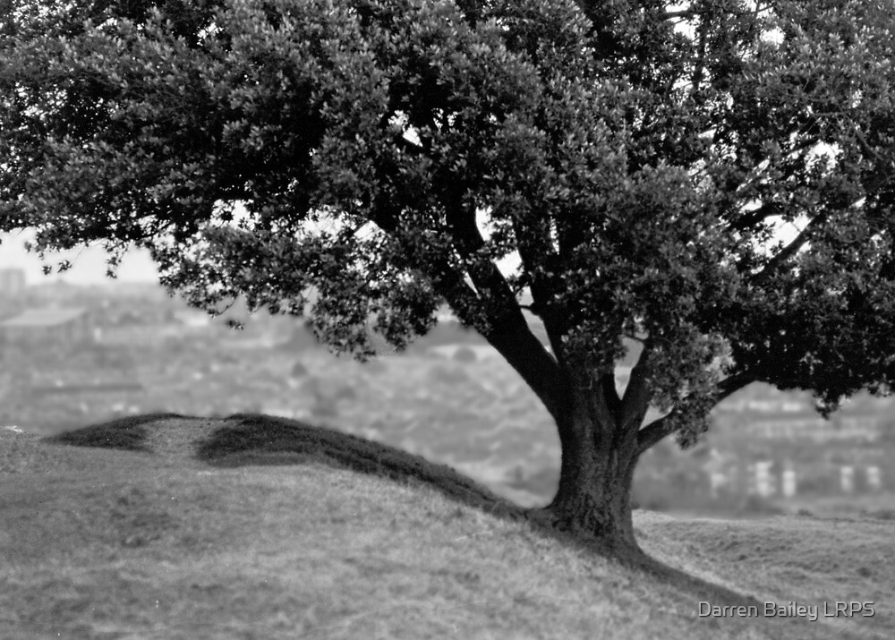 On the crest of the hill (35mm) by Darren Bailey LRPS
