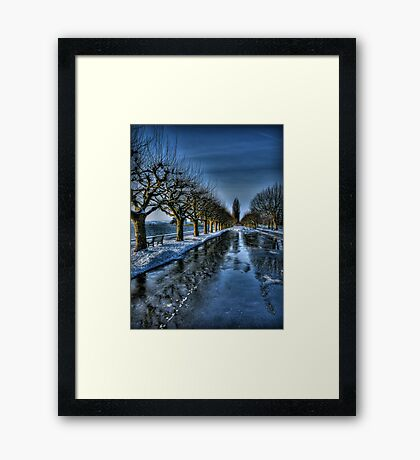 Trees of the Zugersee II Framed Print