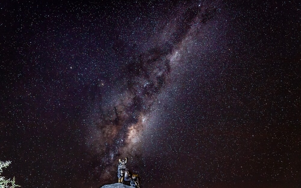 Milky Way Dog  by Russell Charters