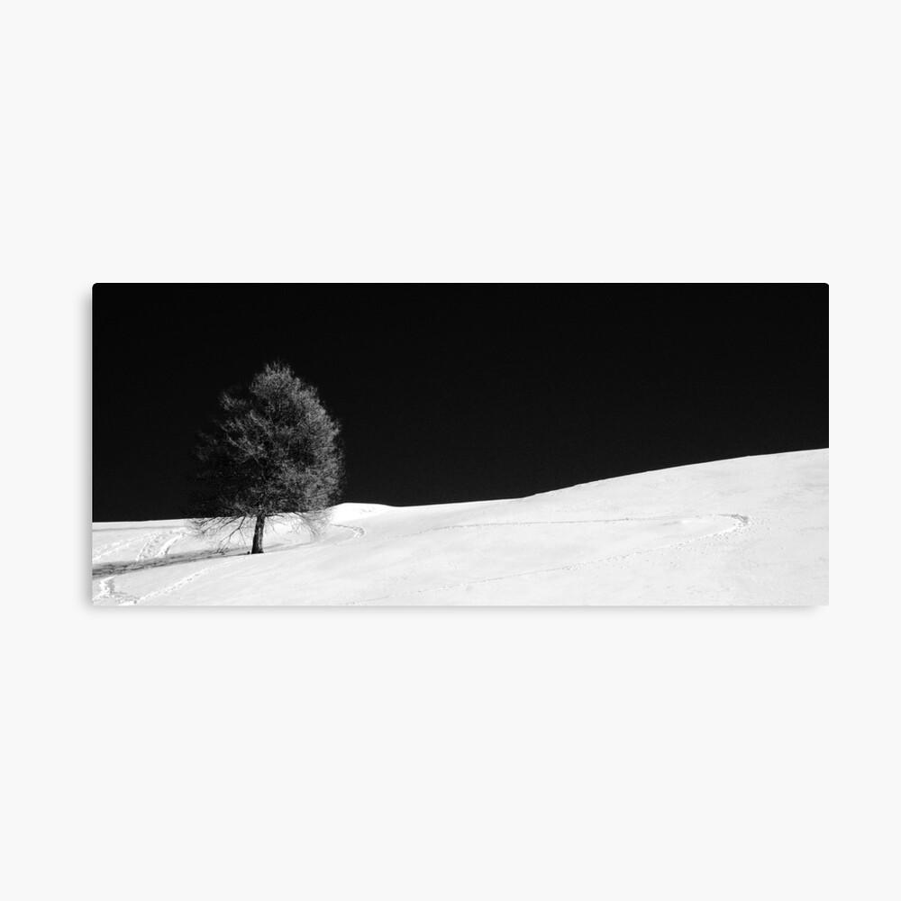 Winter solitude Lienzo