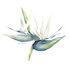 White Bird of Paradise by youdesignme