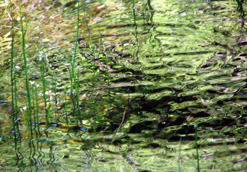 Green by Chris Gudger