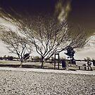 Winterdays by Julia Goss
