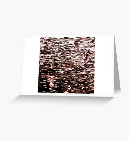 Canal Birds Greeting Card