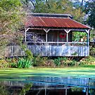 Bayou Barn by Diego Re