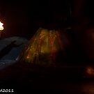 2011 FIREDANCE 172 by MARK HEAD