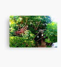 Lush foliage  Canvas Print