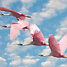 """Power Of Pink"" - roseate spoonbills flying by ArtThatSmiles"