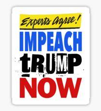 Experts Agree - Impeach tRump Now Sticker