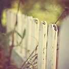 white fence of memories by Julia Goss