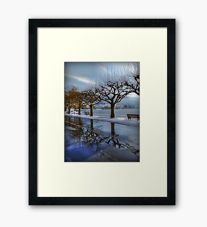 The town for the Trees Framed Print