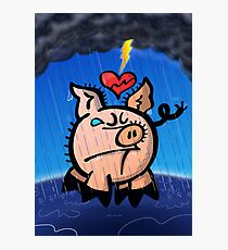 Broken Hearted Pig Photographic Print