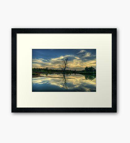 Wetland Dreaming Trees - Wonga Wetlands, Albury ,  Australia - The HDR Experience Framed Print