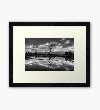 Wetland Dreaming (Monochrome) - Wonga Wetlands, Albury ,  Australia - The HDR Experience Framed Print