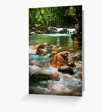 Alligator Streaming - Boulder Creek, Tully NQ Greeting Card