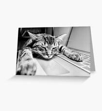 Sleeping @ Work Greeting Card