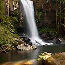 Curtis Falls, Mount Tamborine. by Peter Doré