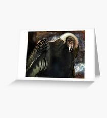 Andean Condor Portrait. I think she's beautiful but to her I am just another piece of meat. Greeting Card